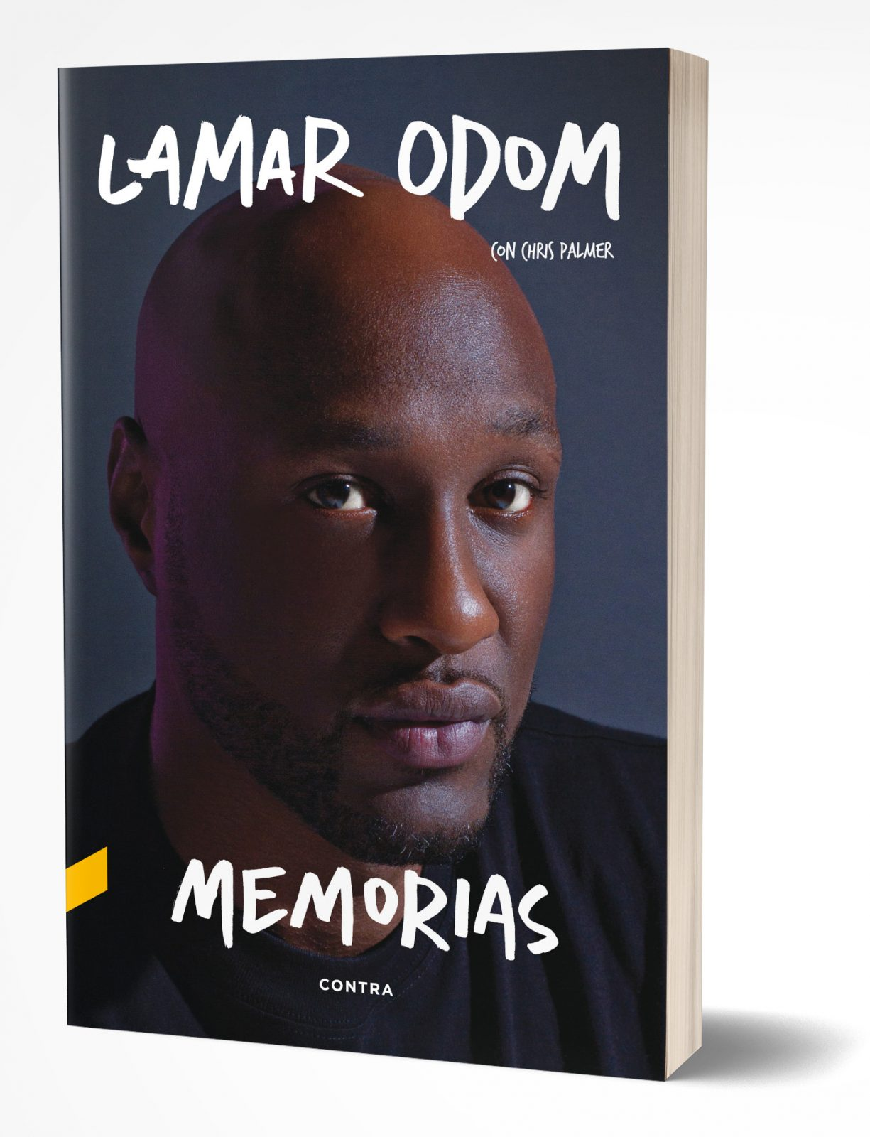 Lamar_Odom_cover_3D